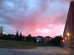 Rosy dawn skies