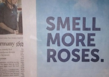 smellmoreroses