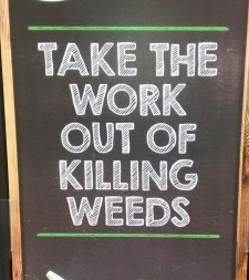workoutofkillingweeds